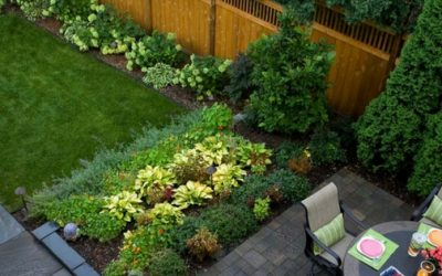 How to Make Your Backyard an Oasis
